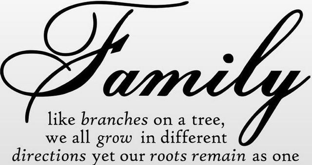 Free Shipping Wholesale Family Like Branches On A Tree Quote 3045cm