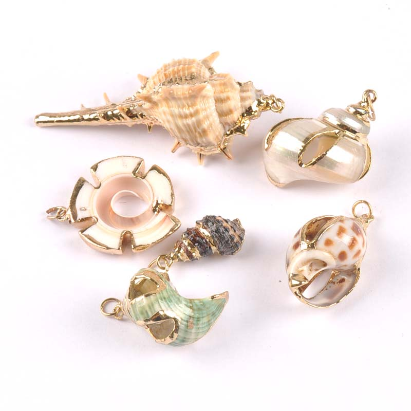 Mix Natural Shell Gold Plated For DIY Handmade Pendant SeaShells Home Decoration 5pcs TRS0217