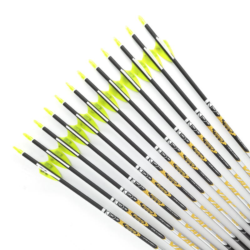 V1 Archery Spine 350-800 Carbon Arrows Pin nock Points Recurve Bow Longbow Hunting Shooting 12pcs