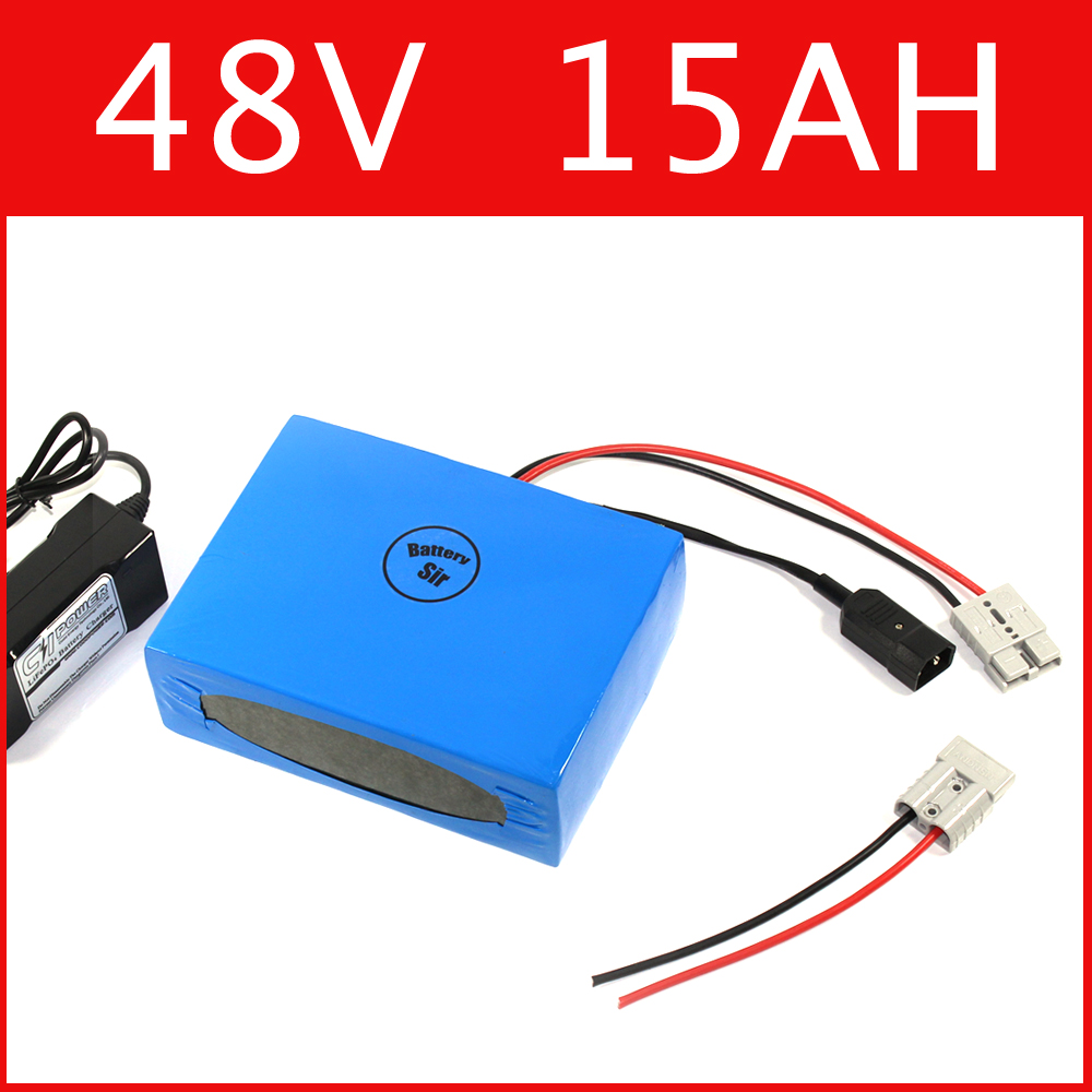 Free customs taxes High quality DIY 48 volt li-ion battery pack with charger and BMS for 48v 15ah e-bike lithium battery pack
