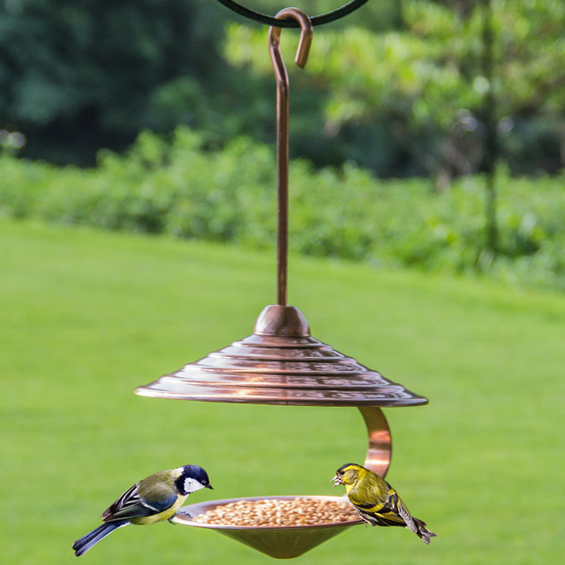 amazon clear com wild garden window dp feeder bird birdscapes outdoor