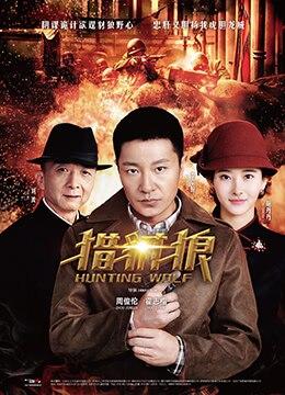 《猎豺狼》2017年中国大陆剧情电视剧在线观看