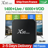 X96 Mini Arabic France IPTV 1 Year Subscription Android 7.1 1+8G QHDTV IP TV Netherlands Belgium Italy French Arabic IPTV Code