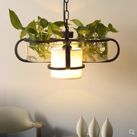 American Country Lighting DIY Iron Glass Plant Restaurant Creative Industry Chandeliers Lamps