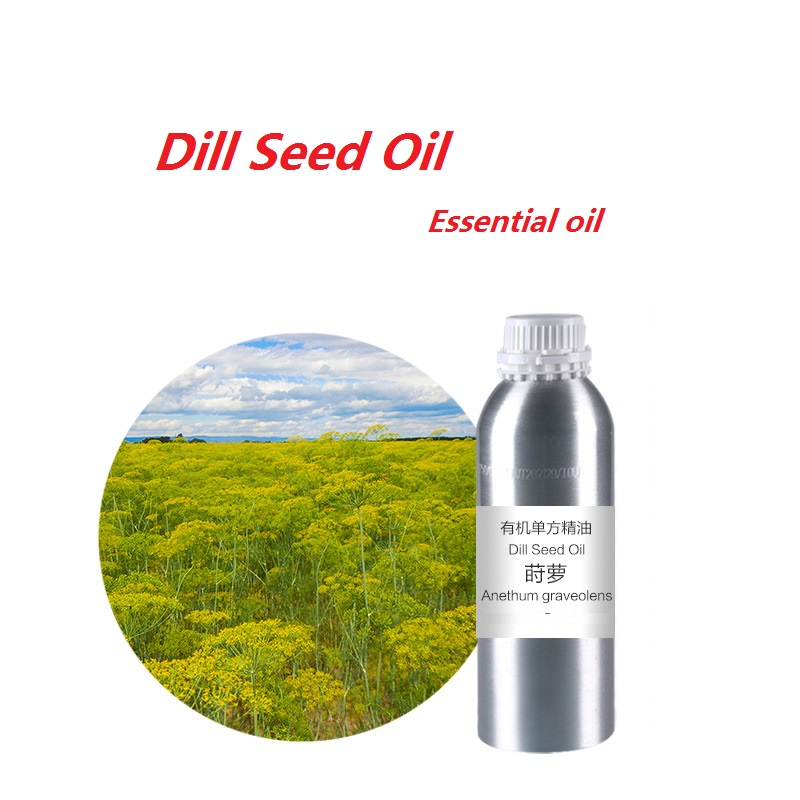 Cosmetics 50ml/bottle Dill Seed Oil essential oil organic cold pressed  vegetable  plant oil free shipping skin care volatile profile and flavour of cold pressed citrus essential oils