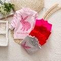 Los Bebés de los Suéteres de navidad infantil Otoño Invierno Conejo Lindo Muchacha Del Niño Ropa de Los Niños Jerseys Jerseys de Manga Larga