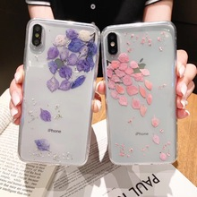 Tfshining Real Flower Dried Flowers Phone Case on For iphone X XR XS MAX Transparent Soft Cover Coque iPhone 6 6S 7 8 plus