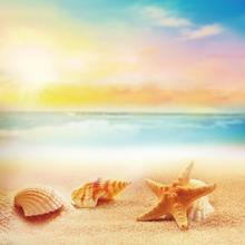 Laeacco Starfish Shells Summer Beach Sunshine Sea Portrait Scene Photographic Backgrounds Photography Backdrop Wall Photo Studio