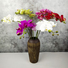 70cm Artificial Phalaenopsis Advanced Latex Silicon Real Touch Big Orchid Orchidee White Wedding Home Guest Decoration Bonsai