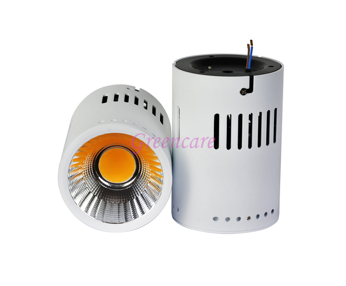 High Quality Lifud Driver 110LM/W 20W COB led surface mounted downlight Dimmable Round Ceiling Down Light 10pcs/Lot 3000-6000K kinklight 08210 01 3000 6000k