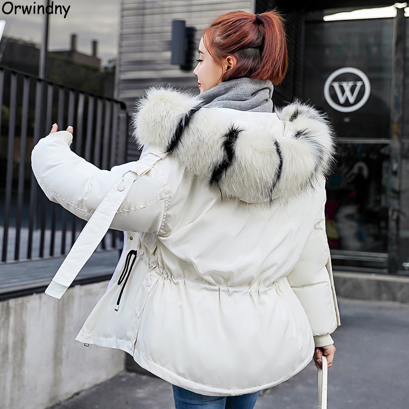 Orwindny 2019 Winter Coat Women Large Fur Collar Winter   Parkas   Female Slim Fashion Short Cotton Padded Jacket Hooded Wadded Coat