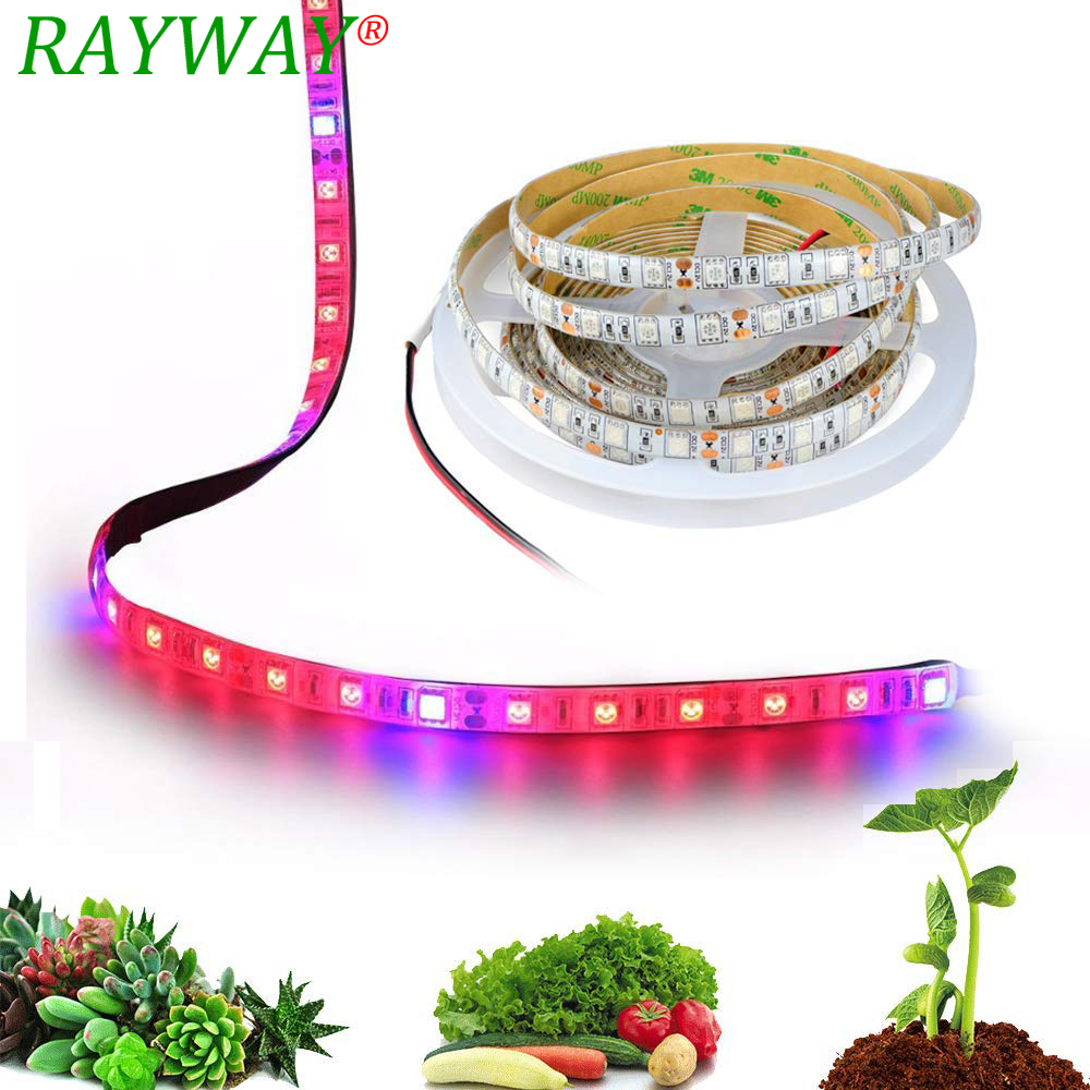 DC 12V Phytolamp For Grow Tent Hydroponics Equipment 5M Led Flexible Strip Plant Lamp Full Spectrum LED Grow Light For Flowers