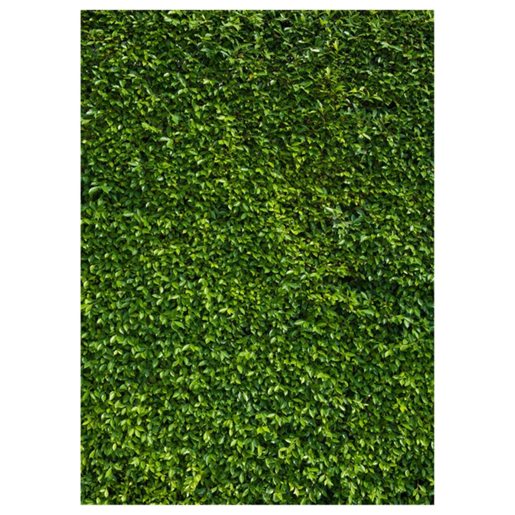 5x7ft(150x210cm) Nature Green Grass Backdrops Photography Wedding or Children Birthday Background photography background wood floor stor wedding photo backdrops vinyl 5x7ft or 3x5ft