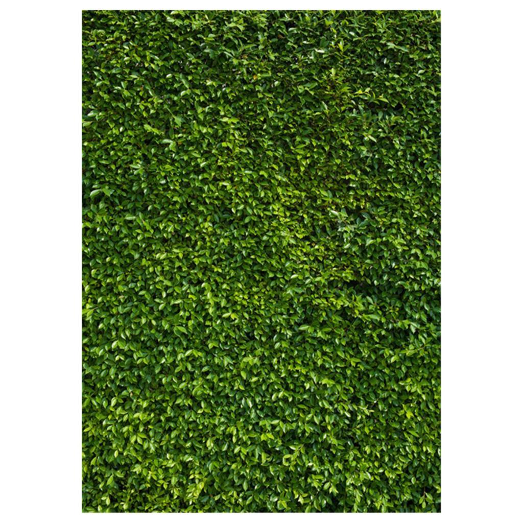 5x7ft(150x210cm) Nature Green Grass Backdrops Photography Wedding or Children Birthday Background 3 5m vinyl custom photography backdrops prop nature theme studio background j 066