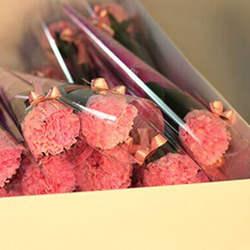 Гвоздики формованное мыло декоративное мыло цветок гвоздики лепестки мыло эфирное масло Гвоздика мыло подарок ко Дню Святого Валентина