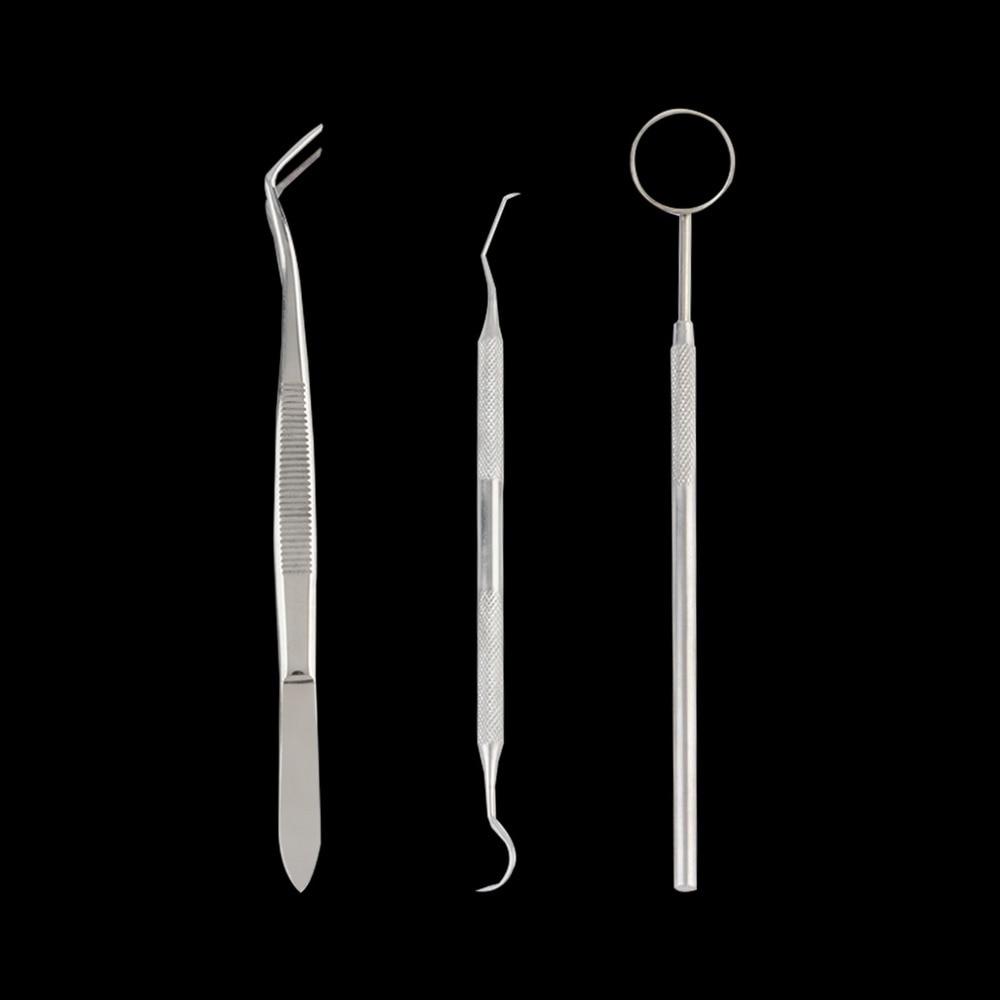 1 satz Edelstahl Dental Instrumente Mund Spiegel Sonde Zange Pinzette Zähne Zahn Sauber Hygiene Kit Qualität
