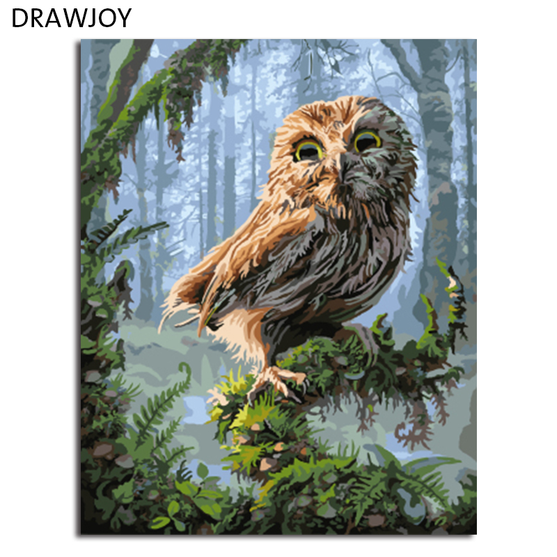 DRAWJOY Gerahmte Bilder Malen Nach Zahlen Eule DIY Digitales Ölgemälde Auf Leinwand Dekoration Wandkunst GX8346 40*50 cm