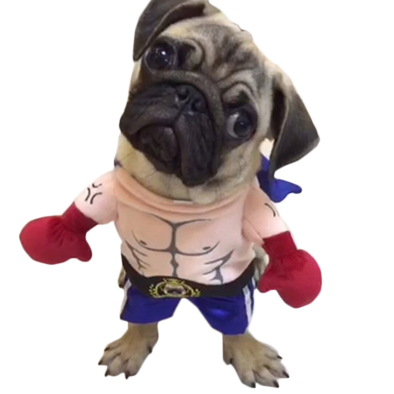 Funny Dog Cat Costumes Boxer Cosplay Suit Pet Clothing Halloween Christmas Uniform Clothes For Puppy Dogs Costume For A Cat #3