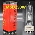 Free shipping etapa msd250w iluminación lámpara msd 250/2 watts 90 v msr NSD 250 W 8000 K Lámpara de Halogenuros Metálicos bombilla Cabeza Móvil Luces Bombillas