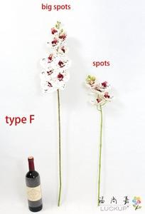 Image 5 - 1 tallo flor Artificial de seda, polilla, orquídea, mariposa, orquídea para casa nueva, decoración de fiestas de bodas en casa, 6 tipos, 12 colores, F152
