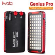 岩田天才プロ GP 01 プロ 24 ワット 2600 K 6000 K 調節可能な Led 補助光 buit インリチウムバッテリー携帯電話 LED ビデオライト