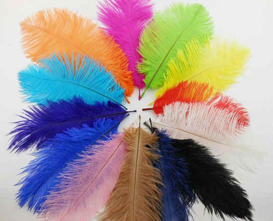 Оптовая продажа, 12 шт./лот, окрашенные из страусовых перьев, маленькие перья для дома, свадьбы, праздника, украшения для самодельного изготовления, Длина 15-20 см, IF003