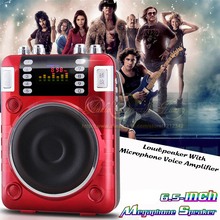 100W Power Amplifier Mini Portable Fm Radio Portatil Digital Radio FM Loudspeaker Mp3 Music Player USB U Disk TF/SD Card Speaker