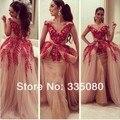 Новый стиль V шеи вышивка мириам тарифов одевается длиной до пола знаменитость платье со съемными хвост реальные фото