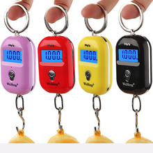 25Kg X5g/10g Mini Digital Hanging Scale LCD Display Backlight Luggage for Fishing Travel Electronic Kitchen