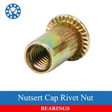 20Pcs M3 M4 M5 M6 M8 Zinc Plated Carbon Steel Knurled Nuts Rivnut Flat Head Threaded Rivet Insert Nutsert Cap Rivet Nut