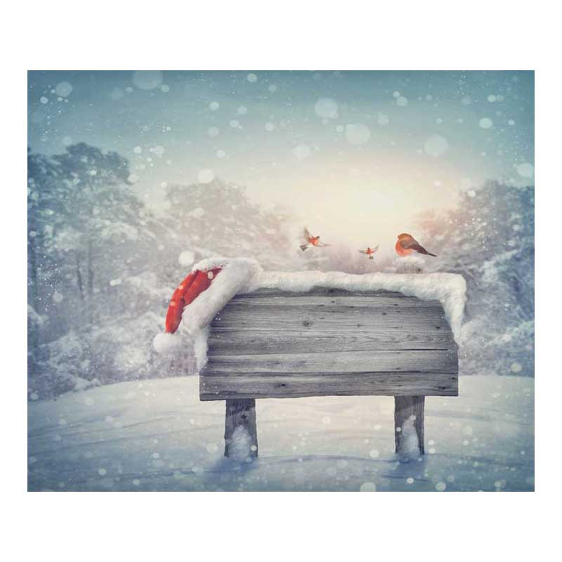 10x10ft free shipping Christmas backdrops Customized computer Printed vinyl photography background  for photo studio  st-206 7x5ft christmas style wallpaper children baby photography backdrops vinyl background for photo studio christmas backdrops st 750
