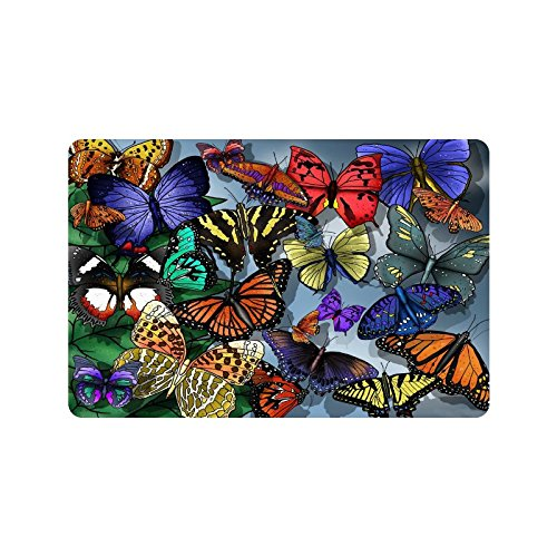 Beautiful Butterfly Doormat Entrance Mat Floor Mat Rug Indoor/Outdoor/Front  Door/Bathroom Mats Rubber Non Slip