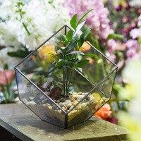 Modern Clear Plant Terrarium Vase Home Garden Decoration Container Glass Flower Pot Tabletop Geometric Small Bonsai Glass Vase