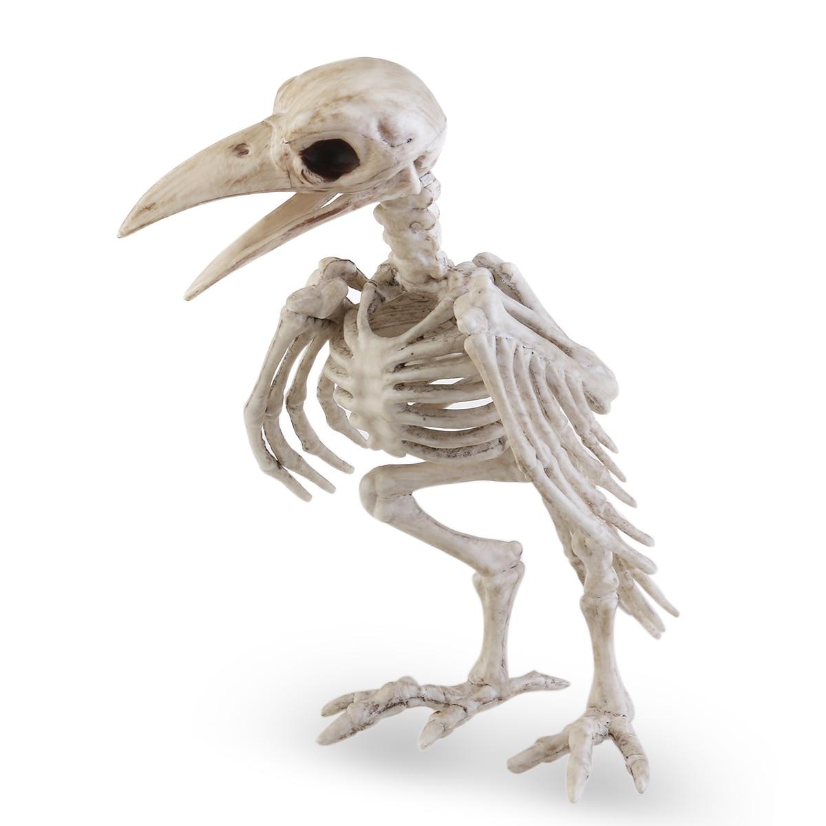 Crazy Bone Skeleton Raven 100% Plastic Animal Skeleton Bones Horror ...