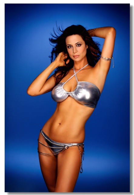 Custom Canvas Wall Decor Sexy Catherine Bell Poster