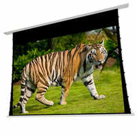 T4HALR-16:9-Premium built in recessed ceilling tab tensioned motorized projection screen with Ambient light rejecting screen ALR