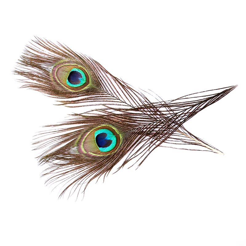 Boutique 30 Pieces 25-30CM Peacock Feather Eyes 4-6CM Wide Hair Wedding Dress DIY Jewelry Fluffy Pop Decoration