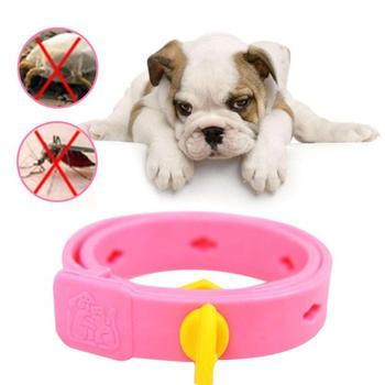 Tick Dogs Collar Parasite Deworming