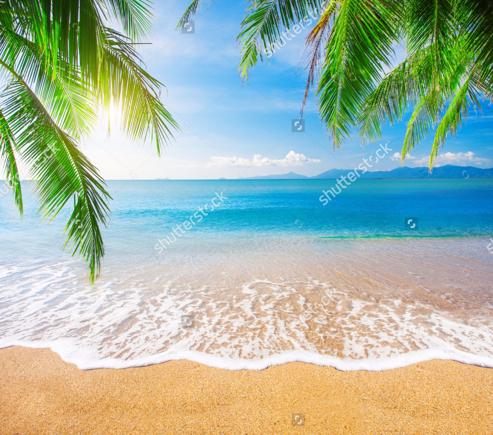 Image by Shutterstock Tropical Palm Trees On The Beach Women/'s Tee