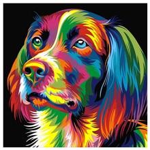 DIY 5D diamond painting color depicting dog animal cross stitch mosaic embroidery rhinestone decoration craft