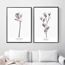 Pink Magnolia Lotus Flower Nordic Posters and Prints Wall Art Canvas Painting Pop Pictures For Living Room Home Decor