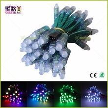 100pcs wholesale Full Color DC5V/DC12V 12mm WS2811 IC RGB Led Module String Green wire Waterproof IP68 Digital LED Pixel Light