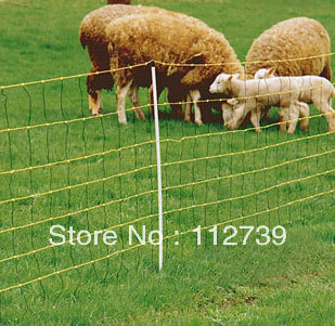 US $4 03 |Hot Sale!!!! Goat Fence, Hot dipped Galvanized Wire 2 5mm, Height  1 2m, Length 50m, Iron Wire Fence trong Hot Sale!!!! Goat Fence,