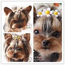 Специальная~ Горячая японская собака заколка для волос в виде маргаритки головной убор для собаки шпилька Тедди Йоркширский 30 шт