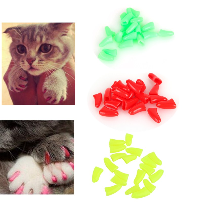 New Hot 20Pcs/Bag Colorful Soft Rubber Pet Dog Cat Kitten Paw Claw Care Nail Caps Cover light green, red, pink, lemon yellow-in Cat Grooming from Home ...