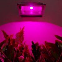 10W 20W 30W 50W LED Flood Plant Grow Light Lamps Waterproof IP65 AC85 265V Red Blue