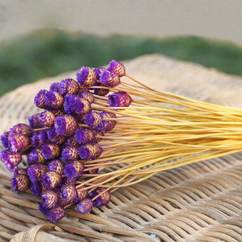 50 unids / lote decoración para el hogar ramo de flores secas flores - Para fiestas y celebraciones - foto 4
