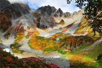ต้นไม้หญ้าฤดูใบไม้ร่วงที่มีสีสันจีนภูเขาบ้าน
