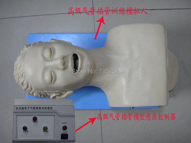 Electronic Tracheal Intubation Simulator,Advanced Electronic Human Trachea Intubation Training Model iso economic newborn baby intubation training model intubation trainer