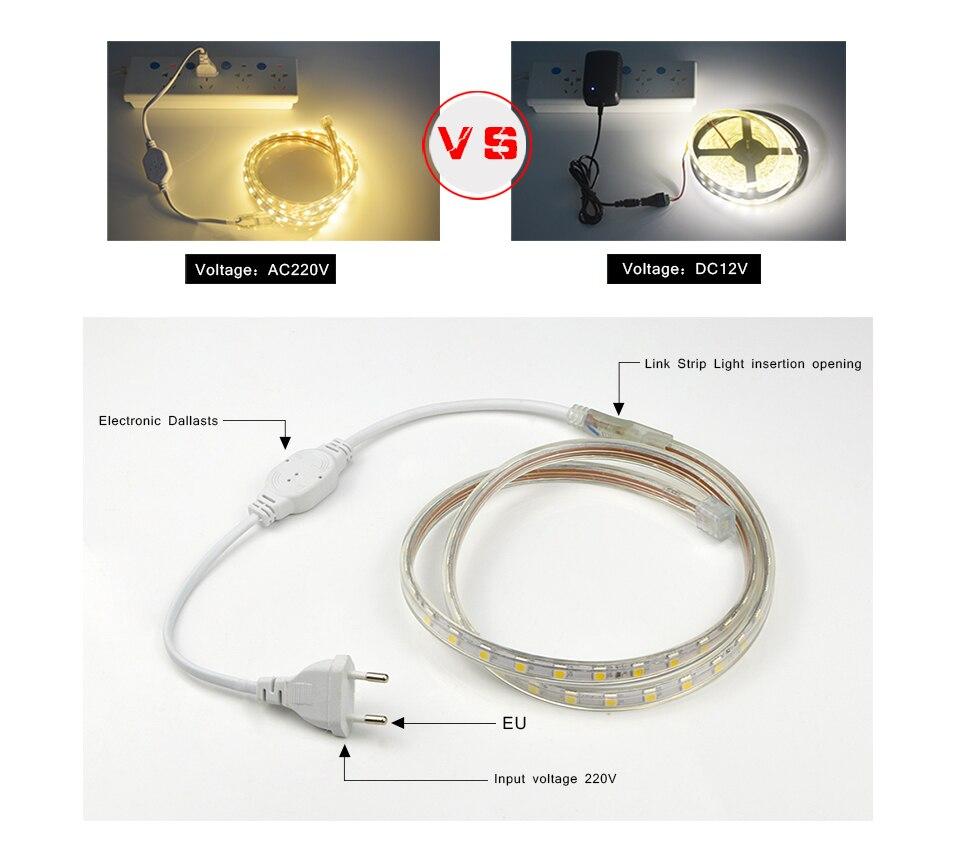 HTB1KXSGbbsTMeJjSszhq6AGCFXau LED Strip 5050 220V Waterproof Flexible LED light Tape 220V lamp Outdoor String 1M 2M 3M 4M 5M 10M 12M 15M 20M 25M 60LEDs/M